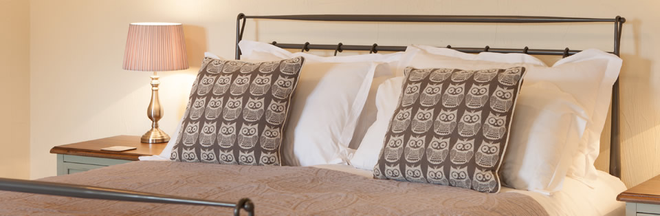 owl print pillow cases on a bed